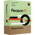 Reason 11 Student/Education