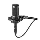 Audio Technica AT2050 Condenser Microphone