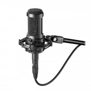 View and buy Audio Technica AT2050 Condenser Microphone online