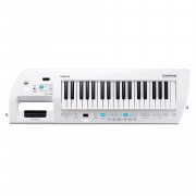 View and buy ROLAND AX09 37 Note Keytar Synthesizer Lucina online
