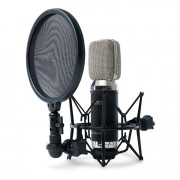 View and buy Marantz MPM-3500R Ribbon Microphone online