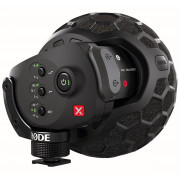 View and buy RODE Stereo VideoMic X Broadcast-Grade Stereo Microphone online